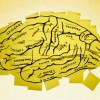 Ekziston kujtesa përzgjedhëse, mund të harrojmë ngjarje traumatike?