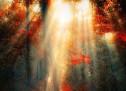"""Kur dëgjoj ndonjë të thotë: """"Jeta është e vështirë"""". Më vjen ta pyes: """"Në krahasim me çfarë?""""… Vdekja më pëshpërin në vesh: """"Jeto, se po vij""""… Një jetë nuk vlen asgjë, sikurse dhe asgjë nuk  vlen sa një jetë… Ajo që e bën të bukur fillimin është ekzistenca e fundit…"""