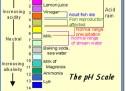 ÇFARË ËSHTË pH?
